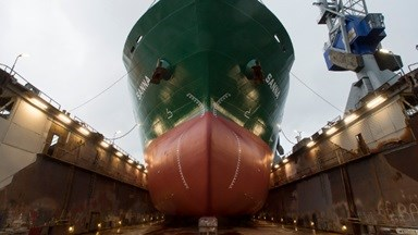 Damen has completed maintenance and surveys on four bulk carriers recently bought at auction by CN Bulkers.